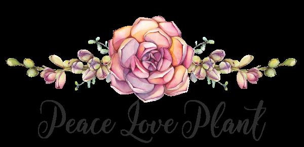 Peace Love Plant